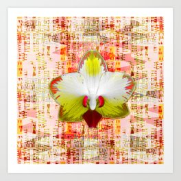 Bright orchid in intermeZZo Art Print