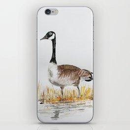 Bernache du Canada (Canada Goose) iPhone Skin