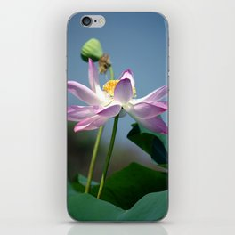 Lotus Blooms iPhone Skin