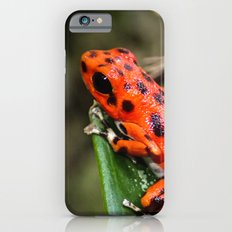 Red Frog iPhone 6s Slim Case