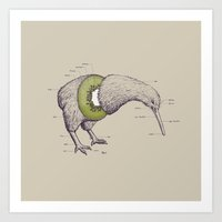 wesley bird Art Prints featuring Kiwi Anatomy by William McDonald
