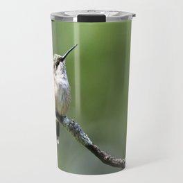 Hummingbird Perch Travel Mug