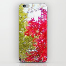 Competing Fall Trees iPhone Skin