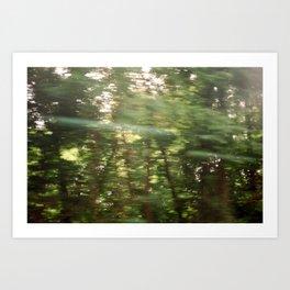 Moving Trees  Art Print