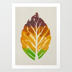 Leaf Cycle Art Print