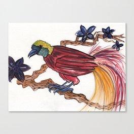 Bird of Paradise 2 Canvas Print