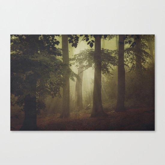 Inner Lights Canvas Print