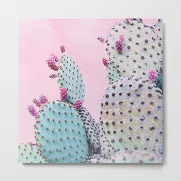 Pink Crush Cactus I Metal Print