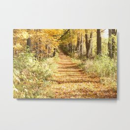 Moore Fall Metal Print