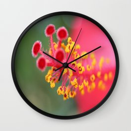Macro Close Up Of Hibiscus Pollen  Wall Clock
