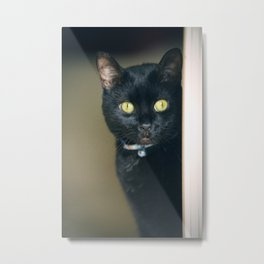 Peeking Black Cat Metal Print