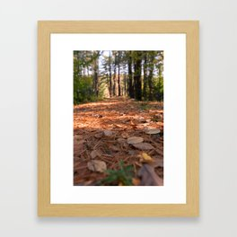 pursue some path Framed Art Print