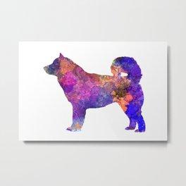Alaskan Malamute Dog  01 in watercolor Metal Print