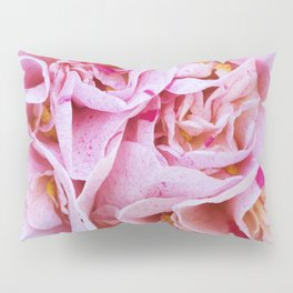 Strawberry Blonde Camellia Pillow Sham