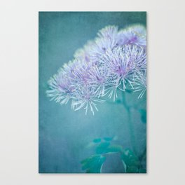 dreamy nature Canvas Print