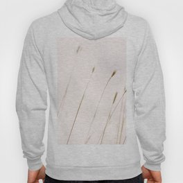 Tall grass against cloudy sky Hoody
