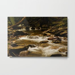 Slow and Steady Metal Print