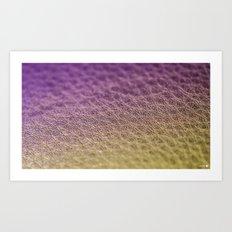 Leather Art Print