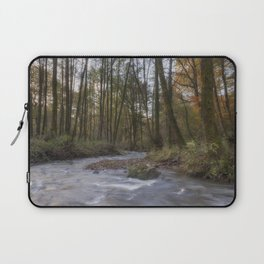 Winter along the Brook Laptop Sleeve