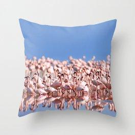Flock of Flamingos Throw Pillow