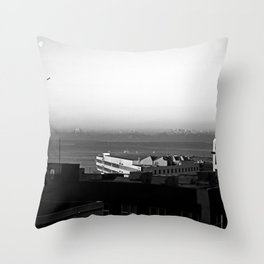 # 299 Throw Pillow