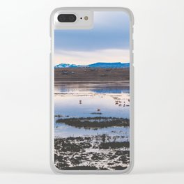Flamingoes on El Calafate, Patagonia, Argentina 2 Clear iPhone Case