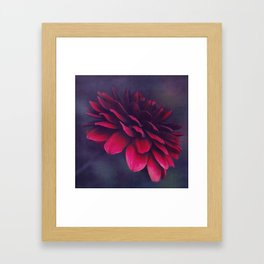 power of bloom Framed Art Print