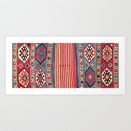Shahsavan  Antique Azerbaijan Persian Khorjin Print Art Print
