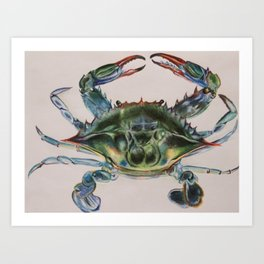 Blue Bay Crab Art Print