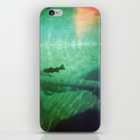 trout iPhone & iPod Skins featuring Trout by Nelka