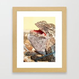 A Chameleon With Open Mouth Framed Art Print