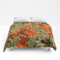 Desert Wildflower - 4 Comforters