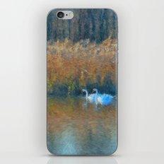 Serenity 2 iPhone & iPod Skin