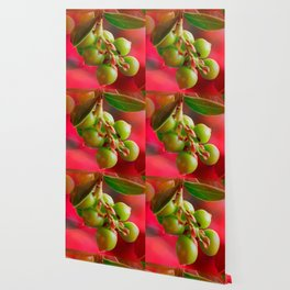 Green Berries Red Background #society6 #decor #buyart Wallpaper