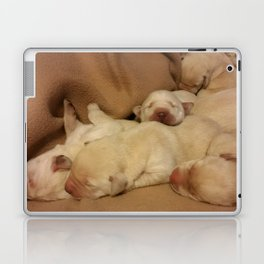 The Huddle with yellow lab puppies Laptop & iPad Skin