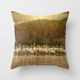 White Pelican Fleet 6801 - Northwestern Nevada Throw Pillow