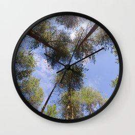 Corsican Pine Canopy Wall Clock