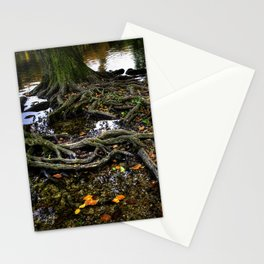 Solid roots Stationery Cards