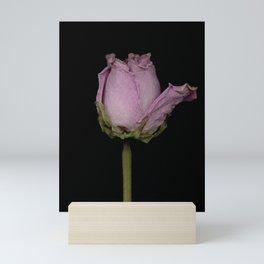 Cameron - Dried Rose Scanography Portrait Mini Art Print