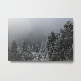Forest_winter Metal Print