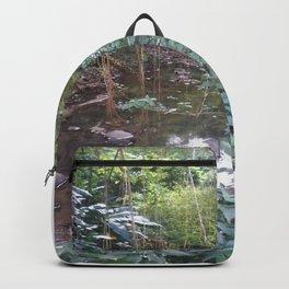 Rivière de Tivoli 972 2015 Backpack
