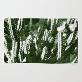 Vintage Cactus Print III Rug