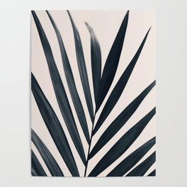 Gray Palm #3 Poster