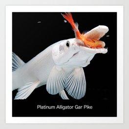 Platinum Alligator Gar Pike Art Print