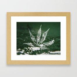 Mari-A-Juana Framed Art Print