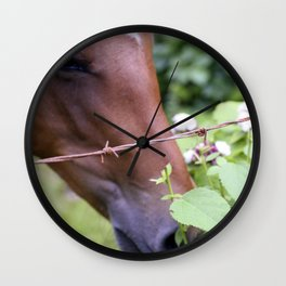Tropical Island-Style Horse Eating Leaves Wall Clock