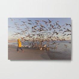 Feeding the seagulls Metal Print