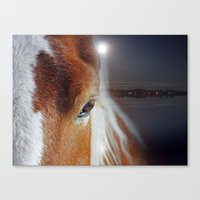 horses Canvas Prints featuring horses  by mark ashkenazi