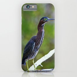 I Need to Be Free iPhone Case