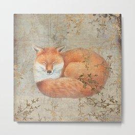 Red fox among thorns Metal Print